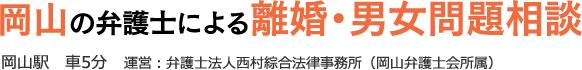 岡山の弁護士による離婚・男女問題相談(西村綜合法律事務所)